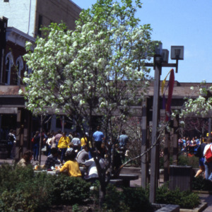 Pedestrian Mall, East College Street, 1980s