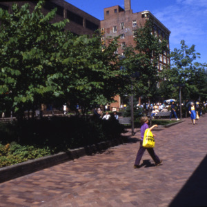Pedestrian Mall and Plaza, 1980s