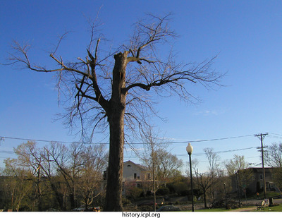 http://history.icpl.org/import/tornado_2006_cgp_bw_0006.jpg