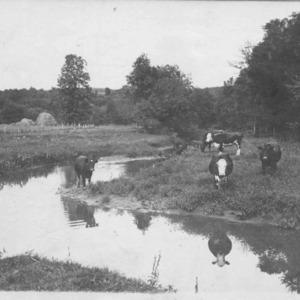 Farm Scene, date unknown