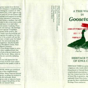 A Tree Walk in Goosetown