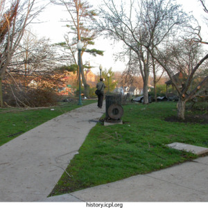 Downed trees at College Green Park