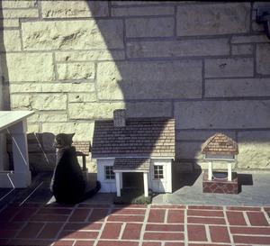 http://history.icpl.org/archive/import/JCHS-20042097.jpg